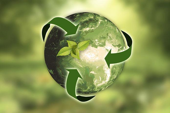 Dowiedz się, jak działają rosnące w siłę firmy recyklingowe